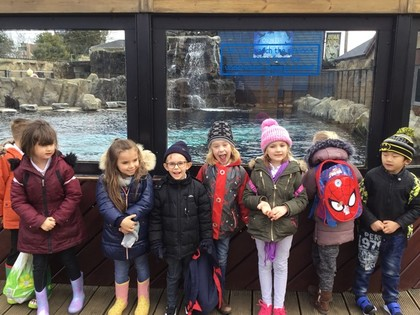 Year 1 Trip to Colchester Zoo