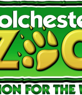 Year 3 Trip to Colchester Zoo