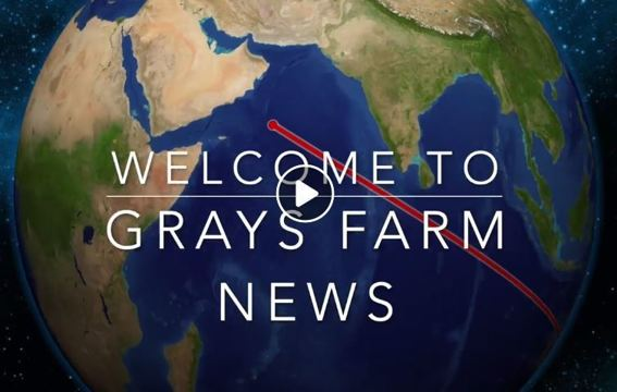 Gray's Farm News