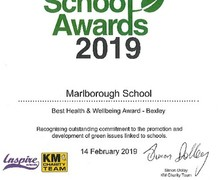 Green school award certificate 2019