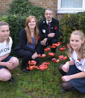 Poppy Installation and auction